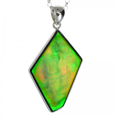 Shield Cut Canadian Ammolite