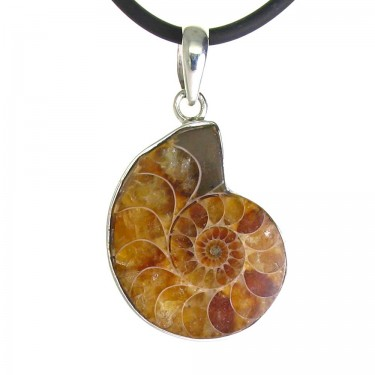 A Smaller Fossil Ammonite Pendant