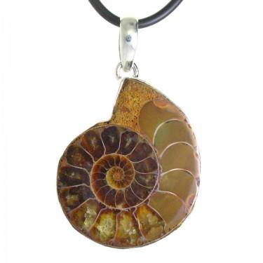 A Fossil Ammonite Pendant