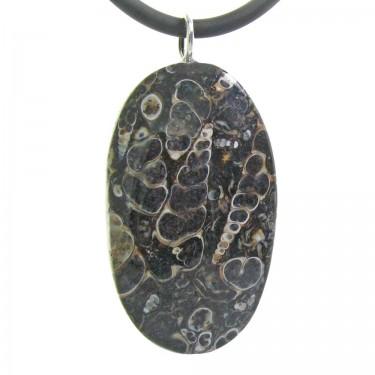 Turritella Agate Fossil Shell Pendant